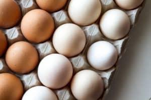 Benefits of eating eggs for kidney disease
